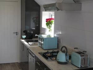 A kitchen or kitchenette at Islandcorr Farm Luxury Glamping Lodges, Giant's Causeway