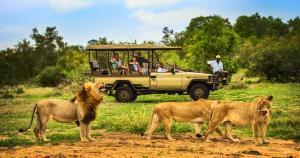 Pet or pets staying with guests at Honeyguide Tented Safari Camp - Khoka Moya
