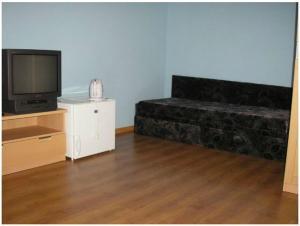 TV a/nebo společenská místnost v ubytování Vila Daiva