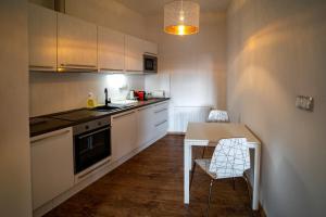 Kuchyň nebo kuchyňský kout v ubytování Apartmany Pisek