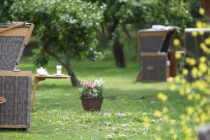 Ein Garten an der Unterkunft Severin's Resort & Spa