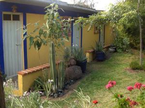 A garden outside Temazcal Tepeyolotli