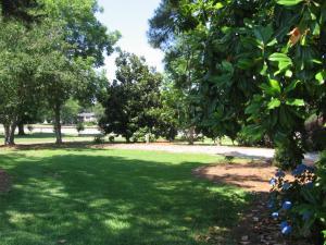 A garden outside White Columns Motel