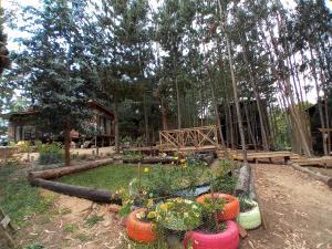 A garden outside Lodge Terra Mar