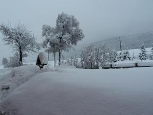Obiekt Apartments Troger zimą