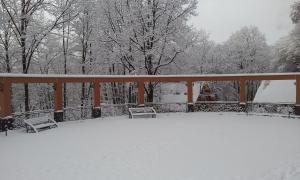 Zatyshok during the winter