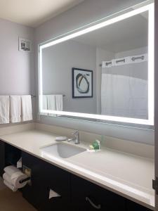 A bathroom at Holiday Inn Los Angeles - LAX Airport