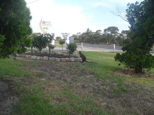 A garden outside Motel Dimboola