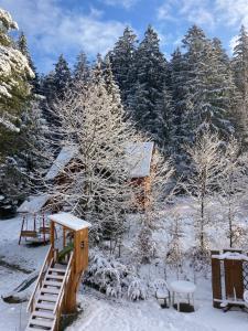 Chaty Marta v zimě