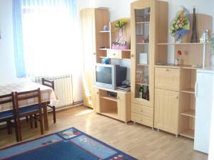 TV a/nebo společenská místnost v ubytování Apartment Goran