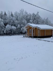 Гостевой двор Starspodvorie зимой