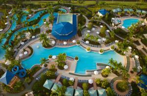 A bird's-eye view of Hilton Orlando