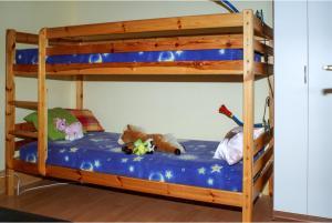 Ein Etagenbett oder Etagenbetten in einem Zimmer der Unterkunft House with 3 bedrooms in Purgstall with enclosed garden and WiFi 40 km from the slopes