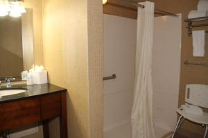 A bathroom at Comfort Inn & Suites Baltimore Inner Harbor