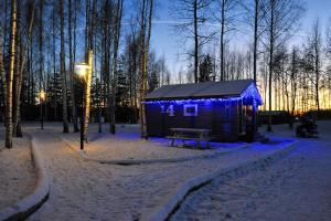 Кемпинг Завидово зимой