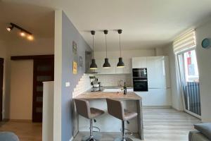 Kuchyňa alebo kuchynka v ubytovaní Cozy apartment 20 minutes from Bratislava