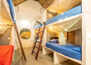 A bunk bed or bunk beds in a room at El Zoo Hostel & Pool