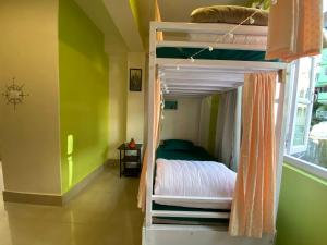 A bunk bed or bunk beds in a room at Tag Along Backpackers