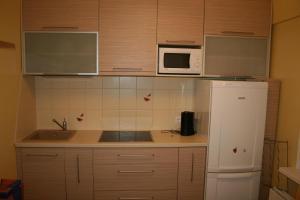 A kitchen or kitchenette at Līvu Apartamenti