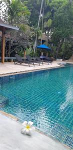 The swimming pool at or close to Cocoville Phuket