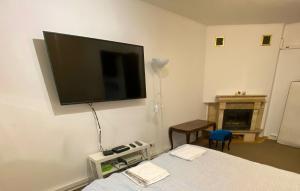TV a/nebo společenská místnost v ubytování Royal Lazienki Apartment