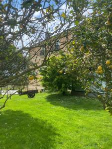 Jardín al aire libre en O Cabazo - 3 estrellas superior -
