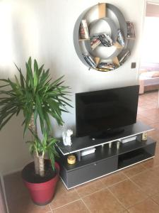 A television and/or entertainment centre at Apartment with 2 bedrooms in Perpignan with wonderful mountain view furnished balcony and WiFi 13 km from the beach