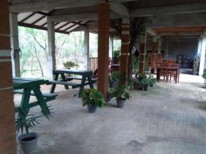 A restaurant or other place to eat at Lavish Eco Jungle