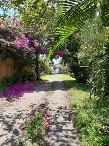A garden outside Pousada Villa de Cananea