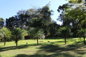 A garden outside Pousada Jardim da Luz