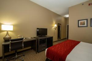 A television and/or entertainment center at Comfort Inn Opelika - Auburn