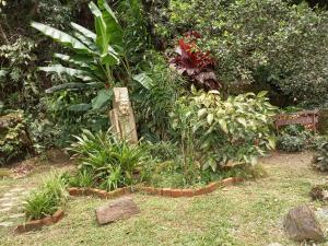 A garden outside Hospedaria Alecrim - Pousada Sustentável APA