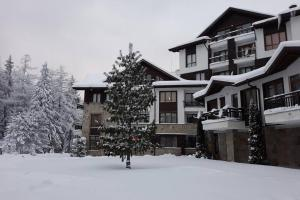 Pinewood ANG Apartment, Semiramida Borovets Hills during the winter