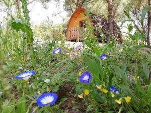Ein Garten an der Unterkunft Glamping Sintra