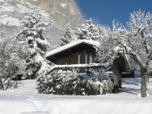 Chalets du Vieux Frêne during the winter