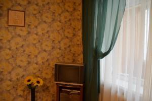 Телевизор и/или развлекательный центр в Апартаменты на Новгородской