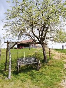 Ein Garten an der Unterkunft Mayr-Eichberg, Familie Berndl