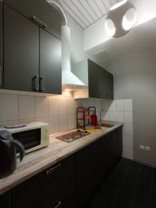 A kitchen or kitchenette at Baikal Loft Studio