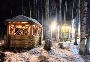 Holiday homes Melnitsa on Seliger зимой