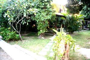 A garden outside Albergue Cultural São Salomão