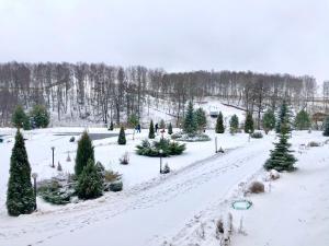 Олимп event-комплекс Коломна зимой