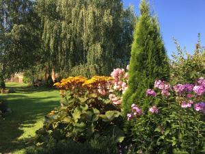A garden outside Гостевой дом на Истринском водохранилище