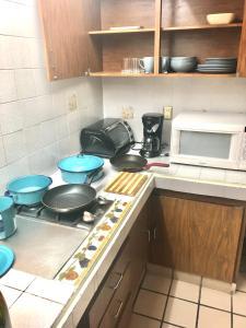 A kitchen or kitchenette at Suites Parador Santo Domingo de G.