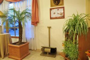 El lobby o recepción de Hotel Salerno