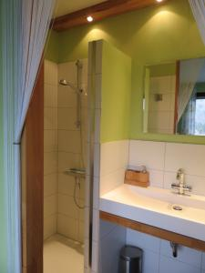 Ein Badezimmer in der Unterkunft Ferienhaus Osterfeld