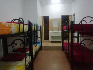 Una cama o camas cuchetas en una habitación  de Windmill Hostel