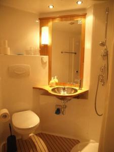 Phòng tắm tại Hôtel Garni Villa Carmen