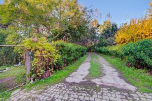 A garden outside Casa do Moinho Rural 4km do Mar