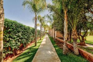 A garden outside luxury modern villa a la palmeraie