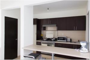 A kitchen or kitchenette at Redwood Villas Zona Industrial San Luis Potosi